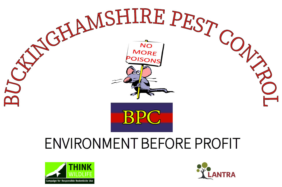 Pest control in Aylesbury and all of Buckinghamshire - Pest Control in Bucks and all nearby areas